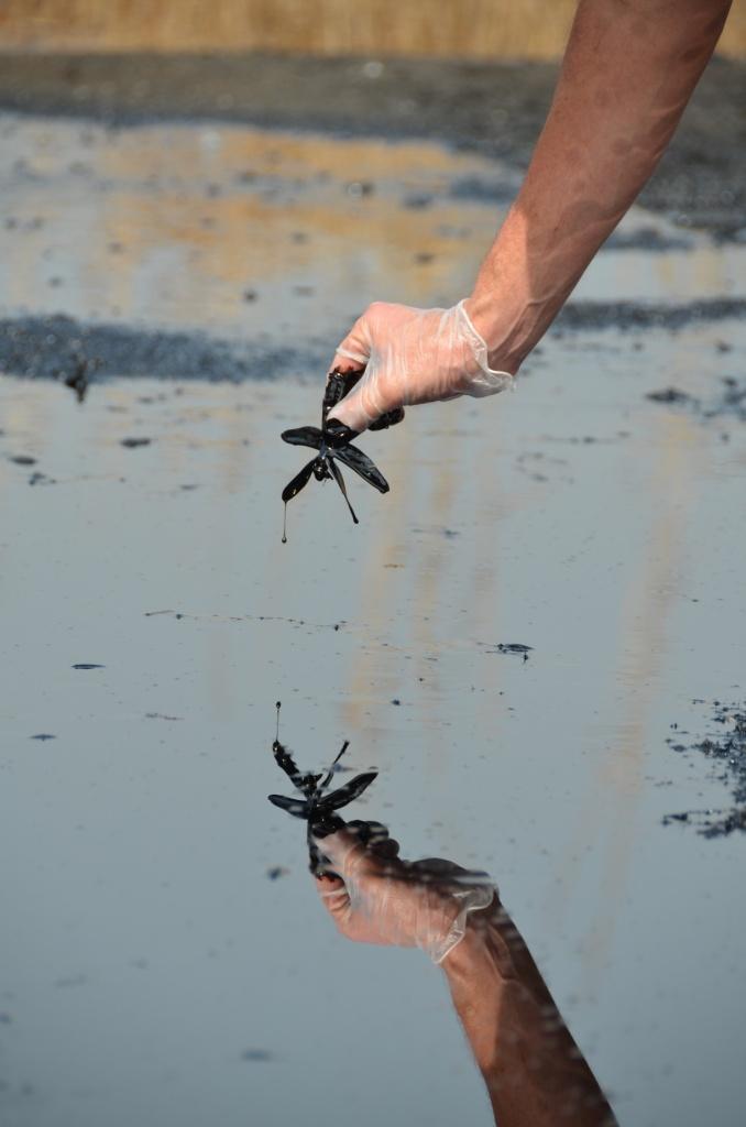 Ölfeld Unity - CPF Thar Jath - Tote Libelle