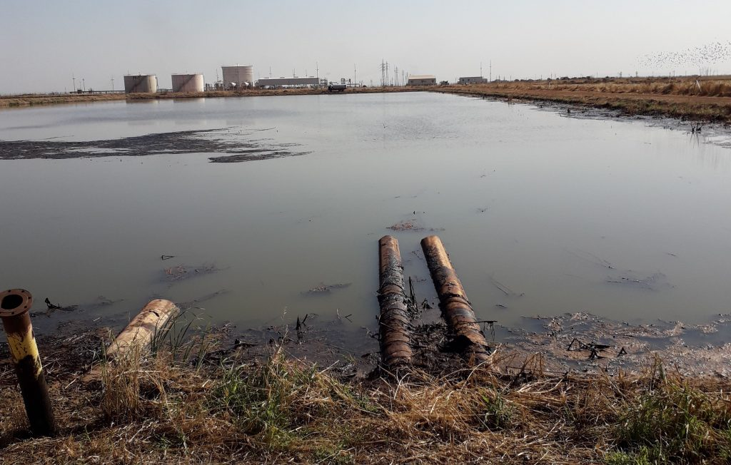 Oil polluted water