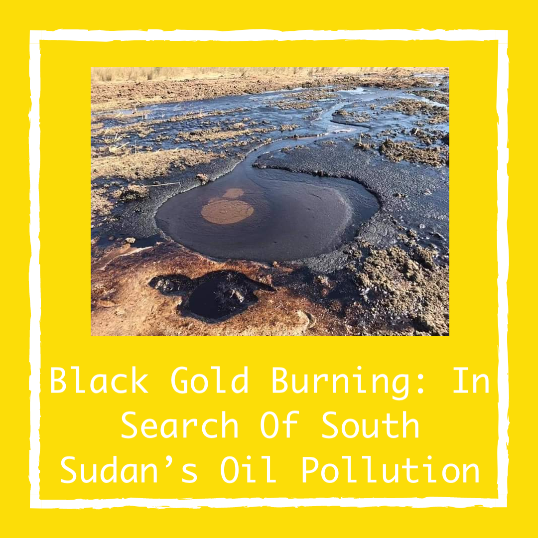 Black Gold Burning: In Search Of South Sudan's Oil Pollution