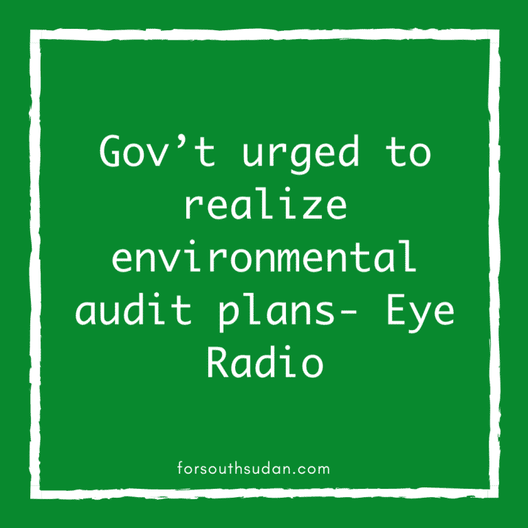 Gov't urged to realize environmental audit plans- Eye Radio