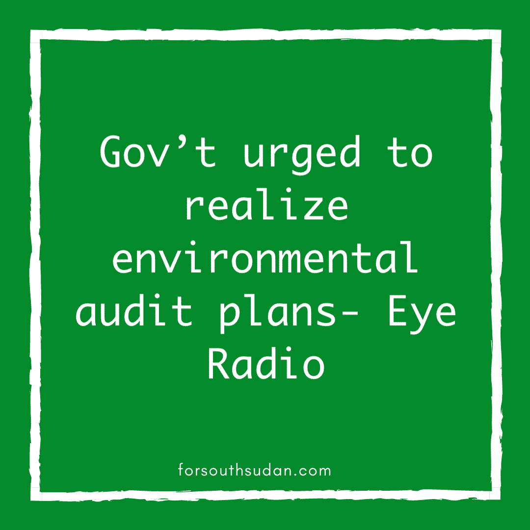 Gov't urged to realize environmental audit plans- Eye Radio