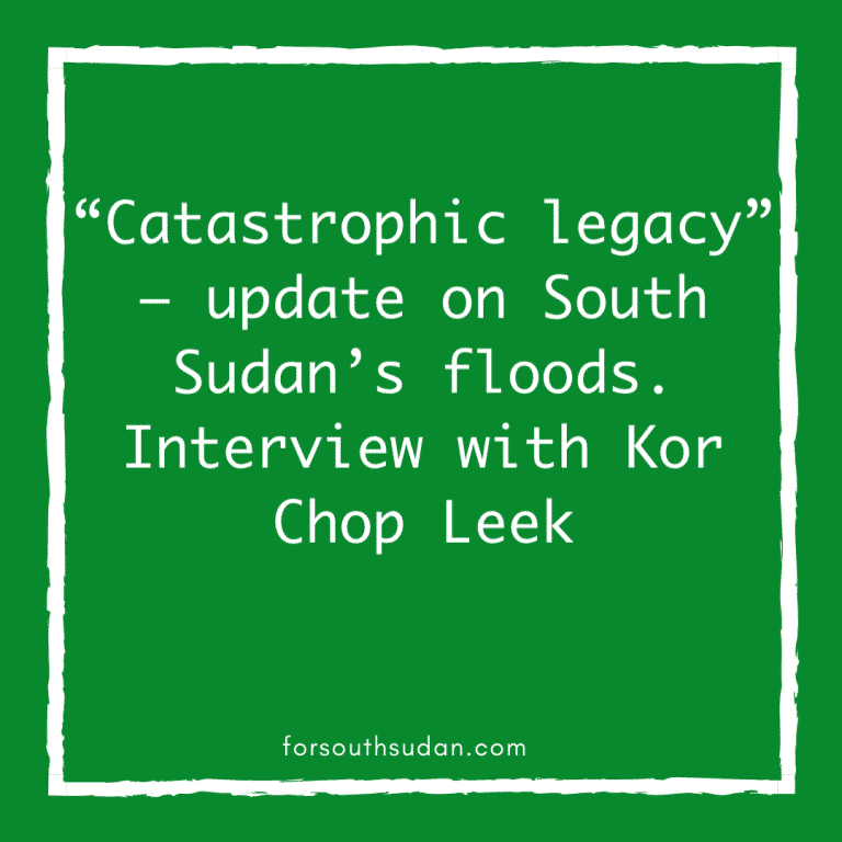 """""""Catastrophic legacy"""" – update on South Sudan's floods. Interview with Kor Chop Leek"""