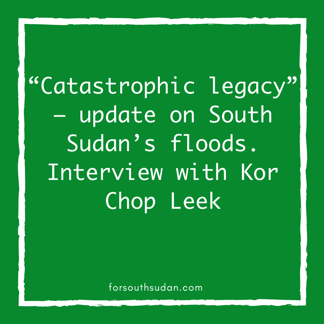 """Catastrophic legacy"" – update on South Sudan's floods. Interview with Kor Chop Leek"