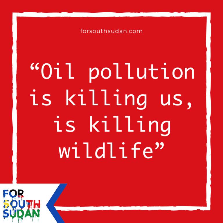 """""""Oil pollution is killing us, is killing wildlife"""""""