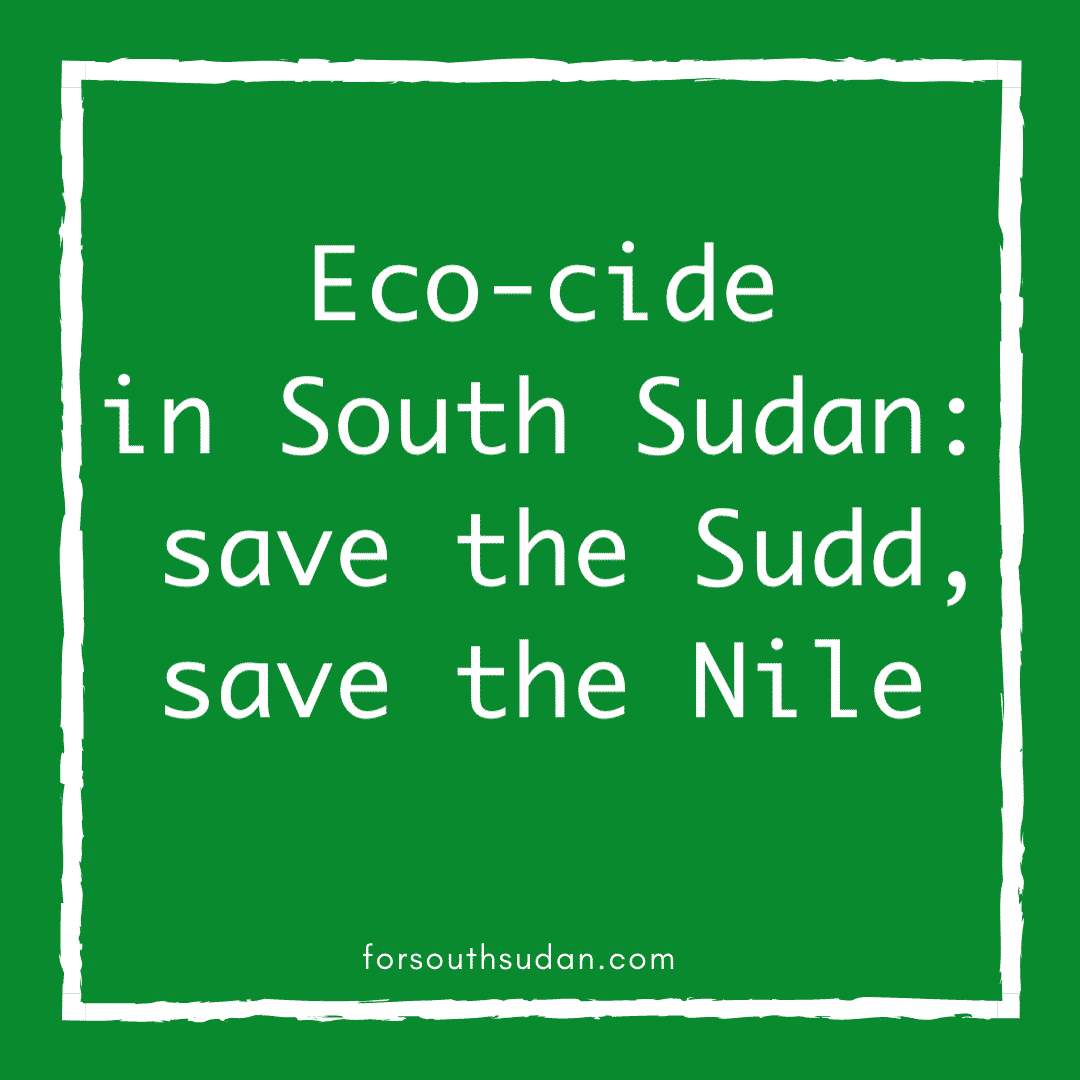 Eco-cide in South Sudan: save the Sudd, save the Nile